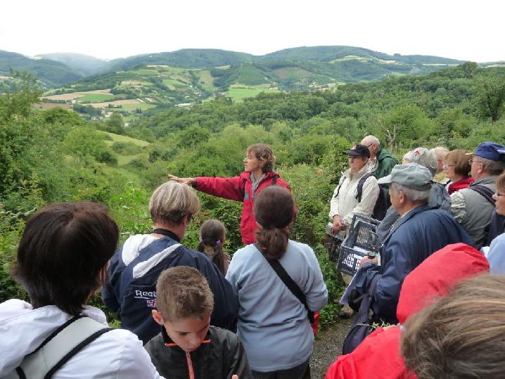 Sortie botanique et pédagogique avec une guide de pays botaniste